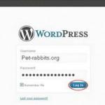 How to Access Wordpress Admin Panel