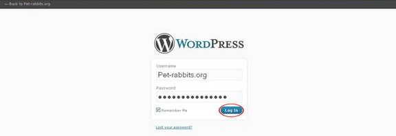 Wordpress Admin Login