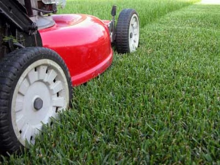 How to Aerate Your Lawn aerate lawn 1