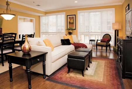 Furnish Home Ecologically