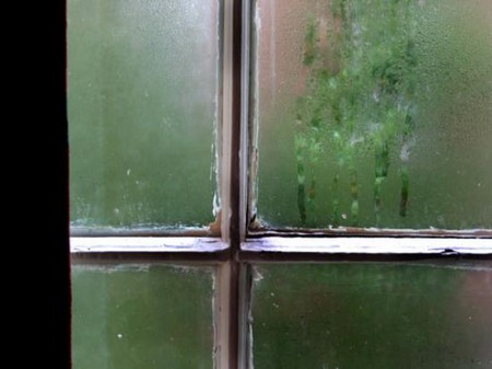 How to Stop Condensation in Your Home  Home Condensation