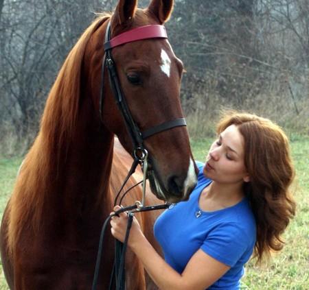 Horse Training