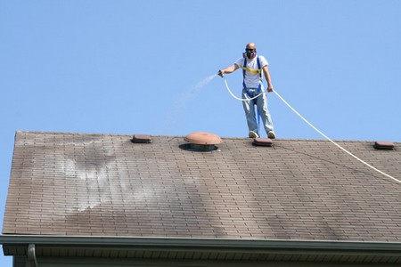 Roof Safety