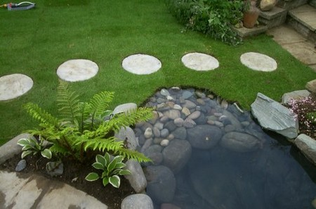 Stepping Stones in Garden