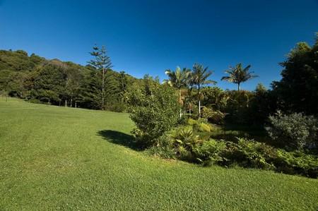 Large Garden Steady Slope