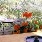 How to Maintain a Balcony Garden