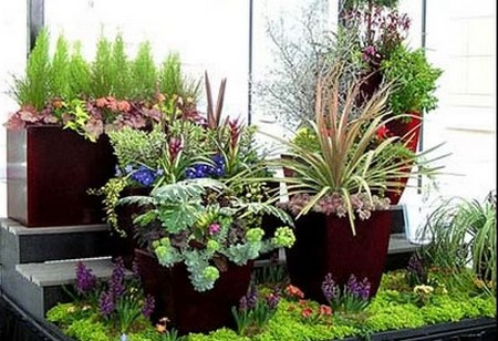 Plant Container Garden
