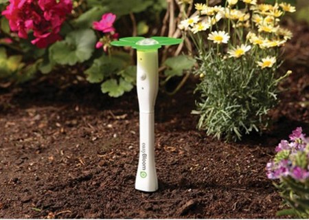 Soil Drainage  Herbs Garden
