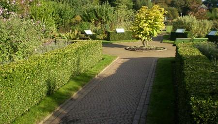 Steeply Sloping Garden
