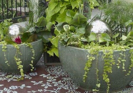 Water Container Garden