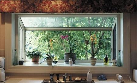 How to Deal with Pests and Disease in Window Garden  Window Garden1