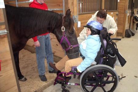 Horse Riding Injuries 5