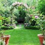 How to Make Garden Compost
