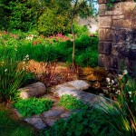 How to Prune Your Garden