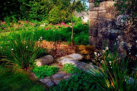Prune Garden