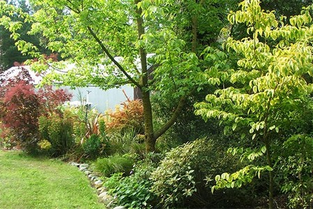 Trees and Shrubs garden