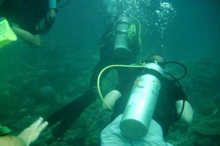 How to Dive in the Indian Ocean  Dive in Indian Ocean