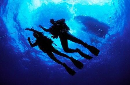 How to Know if You Are Fit to Dive  Dive