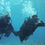 How to Choose Compressing Gases for Scuba Diving