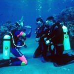 How to Learn the Basic Theory on Scuba Diving