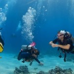 How to Choose the Right Wetsuit and Semi-Dry Suit for Scuba Diving