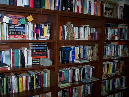 How to Display Your Collection of Books Personal Library
