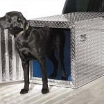How to Ship Your Dog in Cargo Section