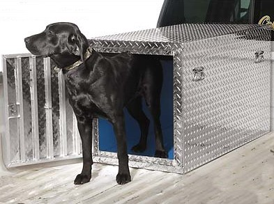 How to Ship Your Dog in Cargo Section Dog Box