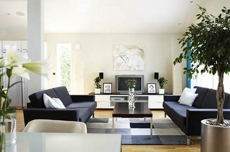 How to Make Your House More Homely  House More Homely