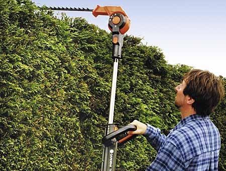 How to Do Cutting and Covering in Organic Gardens  Cutting organic Garden
