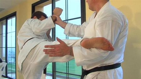 How to Maintain a High Level of Etiquette in the Martial Arts  Etiquette Martial Arts 5