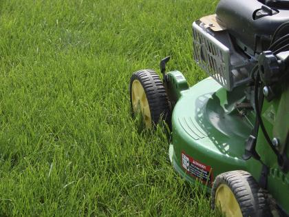 How to Have a Healthy Lawn Naturally  Lawn Aerator