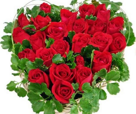 How to Give Shape to Roses Shape to Roses
