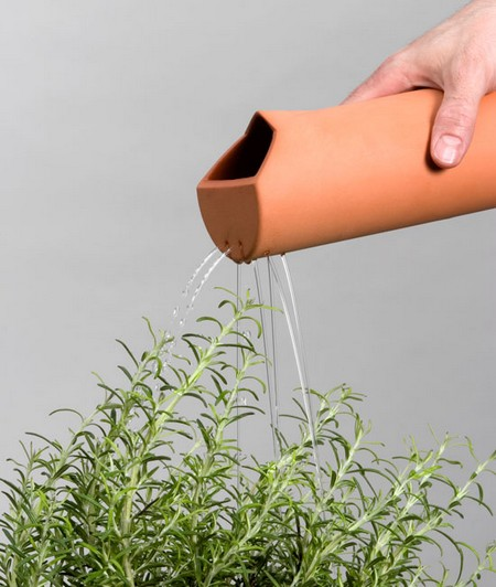 How to Water House Plants Watering Plant