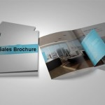How to Create a Sales Brochure