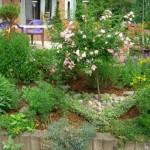 How to Combat Weeds in Your Garden