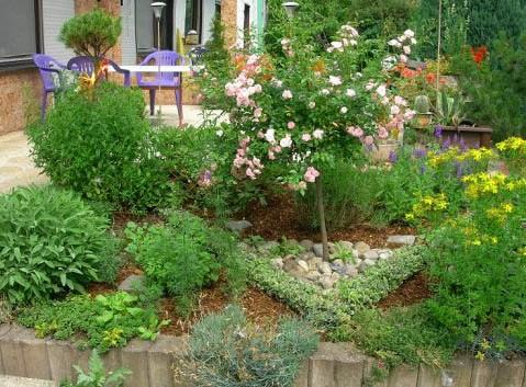 How to Combat Weeds in Your Garden how to combat weeds in your garden e1287376815233