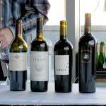 How to Enjoy the True Taste of Merlot Wine
