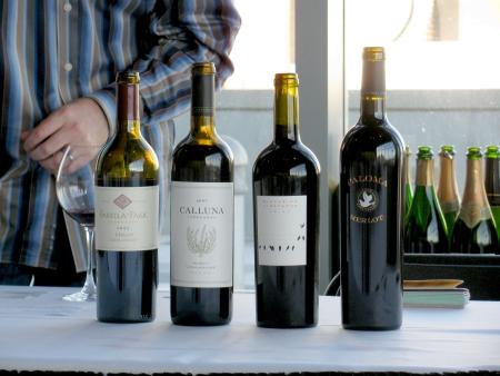 How to Enjoy the True Taste of Merlot Wine Tasting Merlot Wine