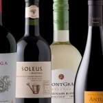 How to Get Hired in the Winemaking Industry
