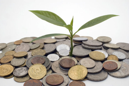 How to Make a Money Tree for a Party how to make a money tree for a party
