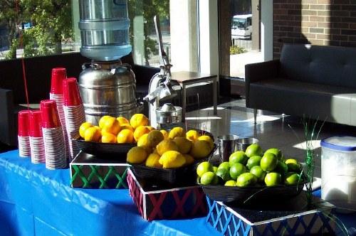 How to Make Lemon Shakeups how to make lemon shakeups