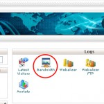 How to View the Bandwidth Usage of a Website in Cpanel