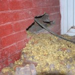 How to Deal With Hiding Damp