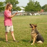 How to Train your Dog to Come and Sit