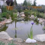 How to Install a Lined Pond