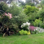 How to Plant Your Garden in Summer