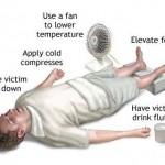 How to Treat Heat Exhaustion and Heatstroke