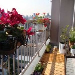 How to Choose Plants for Balcony Garden