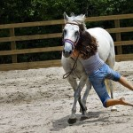 How to Reduce the Risks of Horse Riding Injuries